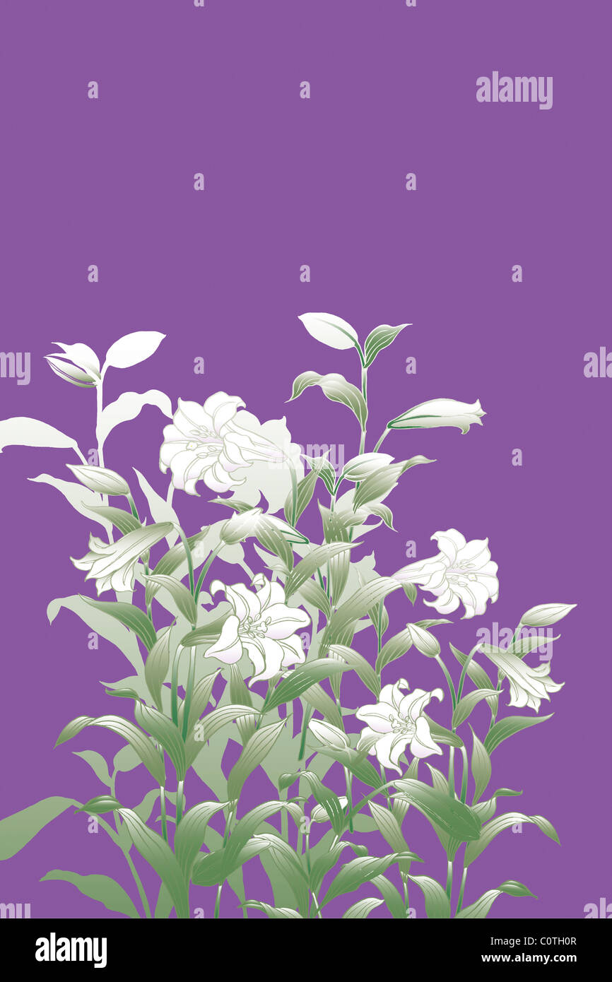 CG of Japanese Painting, Lily - Stock Image