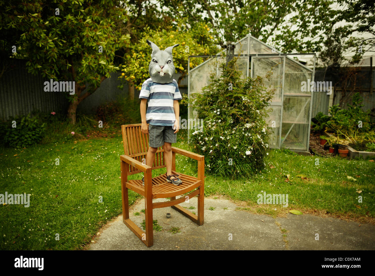 Boy with rabbit mask stands on chair in garden - Stock Image