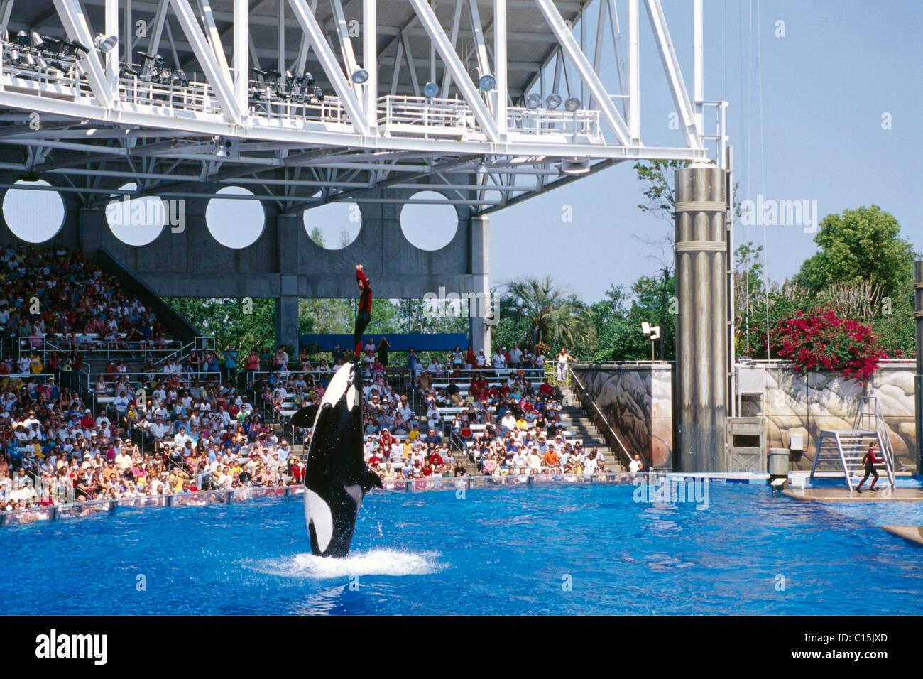 Sea World, Orlando, Florida, USA - Stock Image