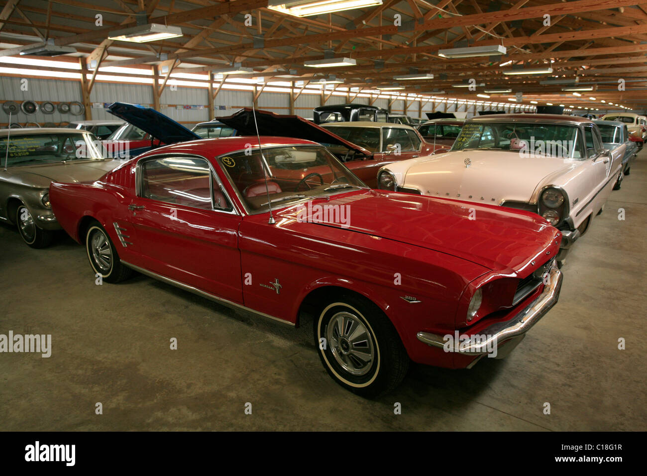 1965 V8 Ford Mustang GT Fastback in the vintage car show Country ...