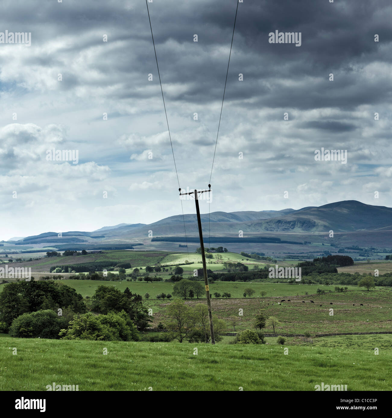 Rural power lines in The Lake District, Cumbria, England UK - Stock Image