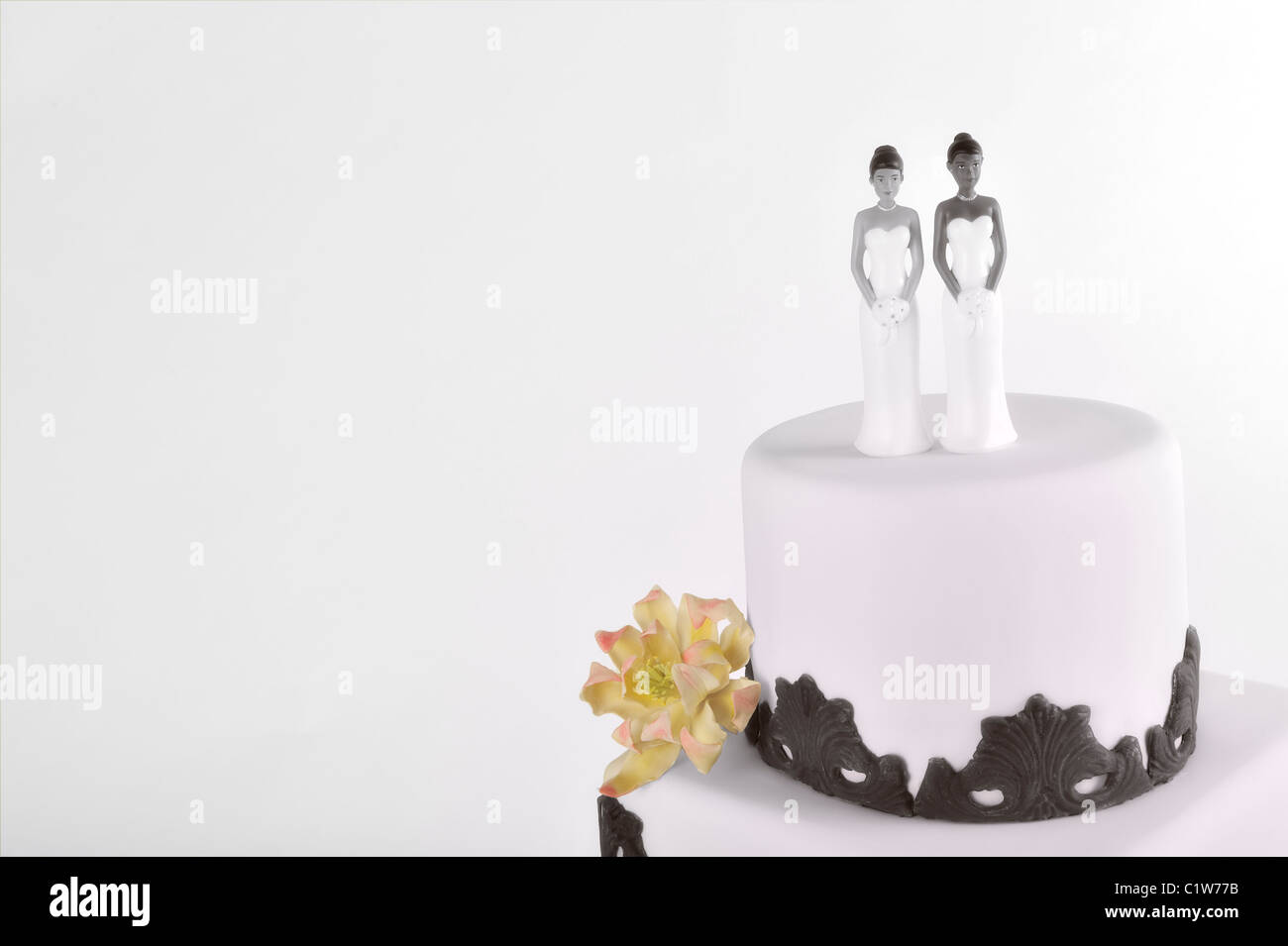 wedding-cake-decorated-two-brides-isolated-on-white-same-sex-interracial-C1W77B.jpg