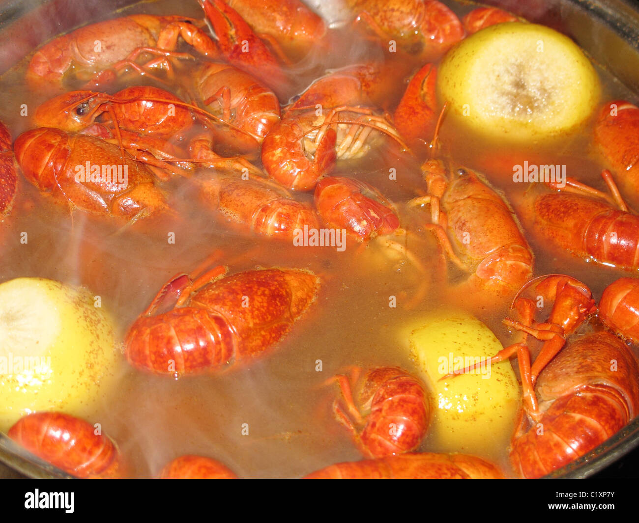 Crawfish boil, crawfish cooking and steaming in a pot with lemon - Stock Image