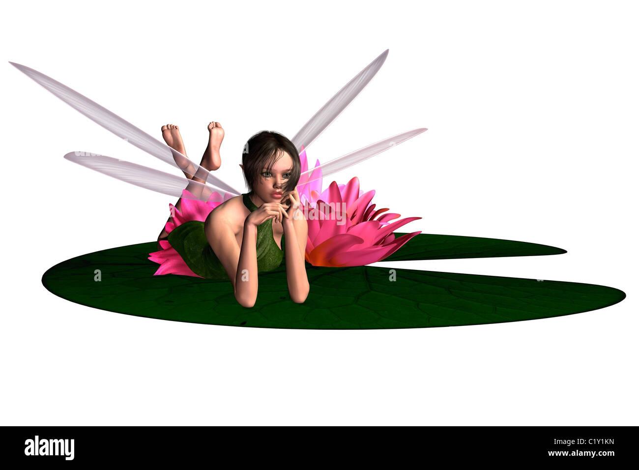 Waterlily Fairy - Stock Image