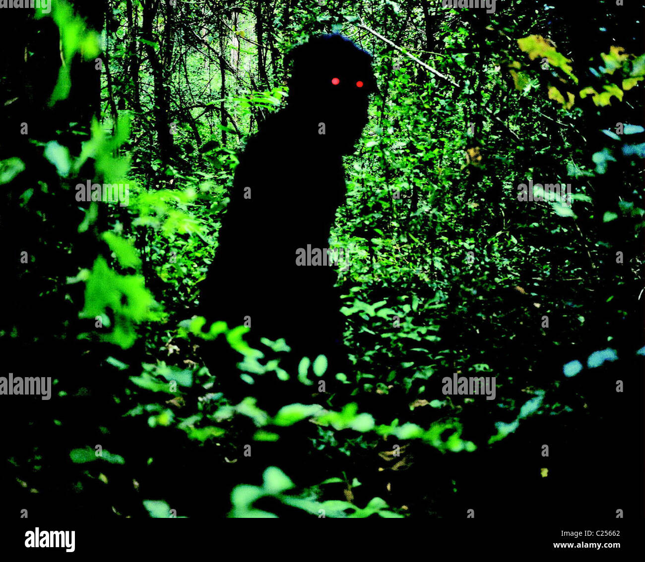 UNCLE BOONMEE WHO CAN RECALL HIS PAST LIVES (2010) LOONG BOONMEE RALEUK CHAT (ALT) APICHATPONG WEERASETHAKUL (DIR) Stock Photo