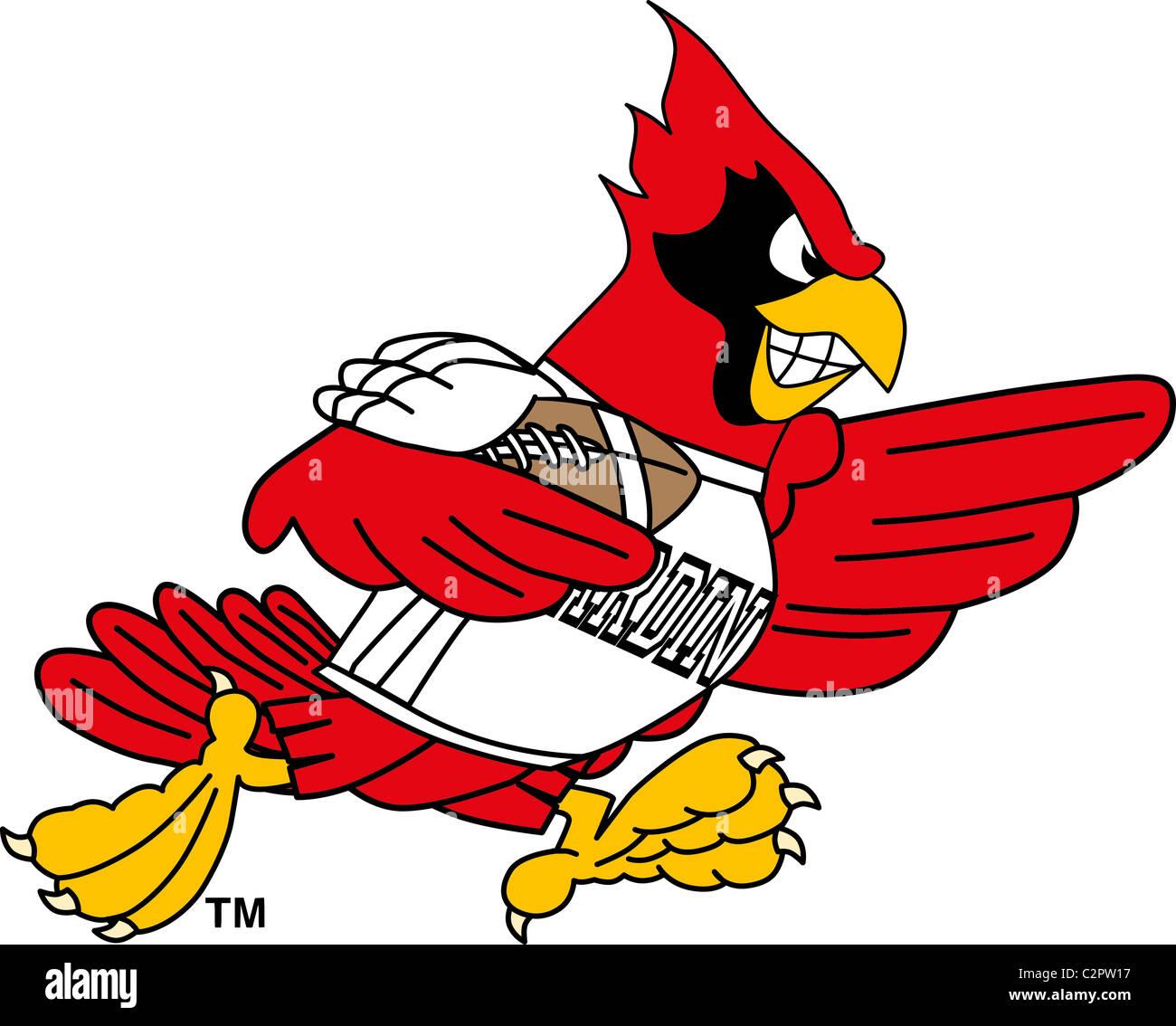Cartoon Cardinal School Mascot Playing Football Stock Photo