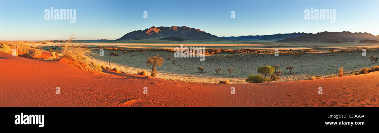 Panoramic view showing the unique ecology of the south-west Namib desert or pro-Namib. NamibRand Nature Reserve, - Stock Image