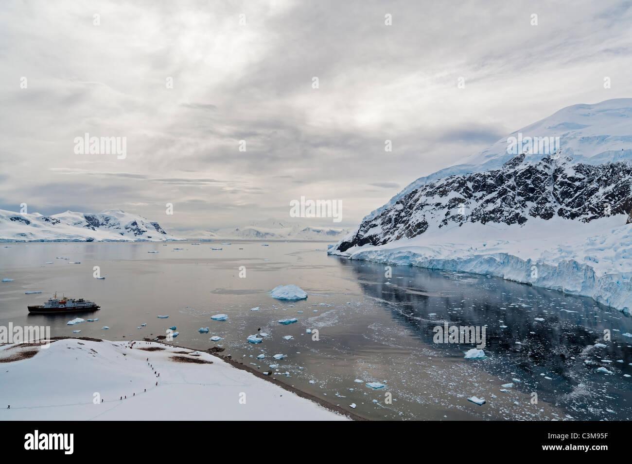 South Atlantic Ocean Antarctica, Antarctic Peninsula, Gerlache Strait, Neko Harbour, Tourist & polar star icebreaker - Stock Image
