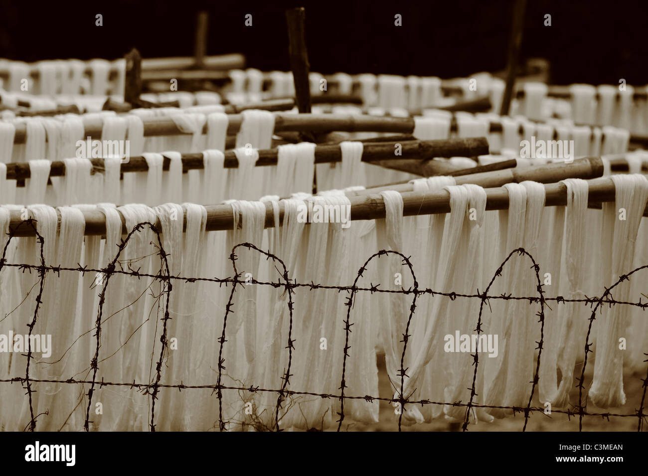 Silk strings against barbed wire - Stock Image