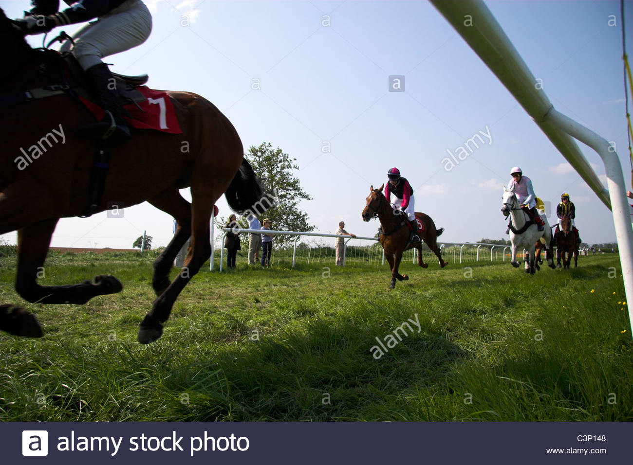 the-berkeley-hunt-point-to-point-horse-racing-trials-gloucestershire-C3P148.jpg