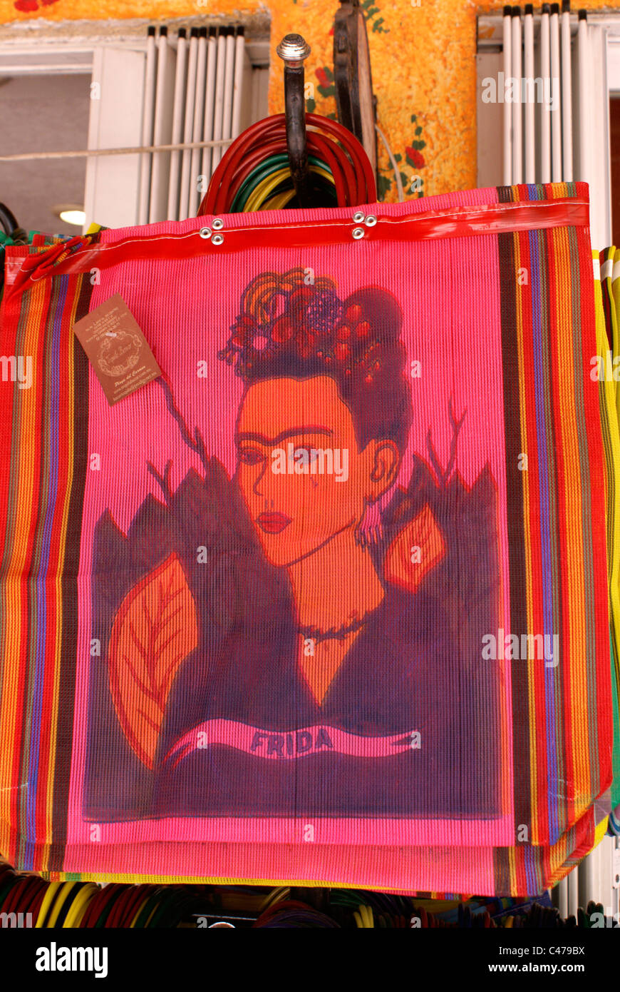 portrait-of-frida-kahlo-on-shopping-bags