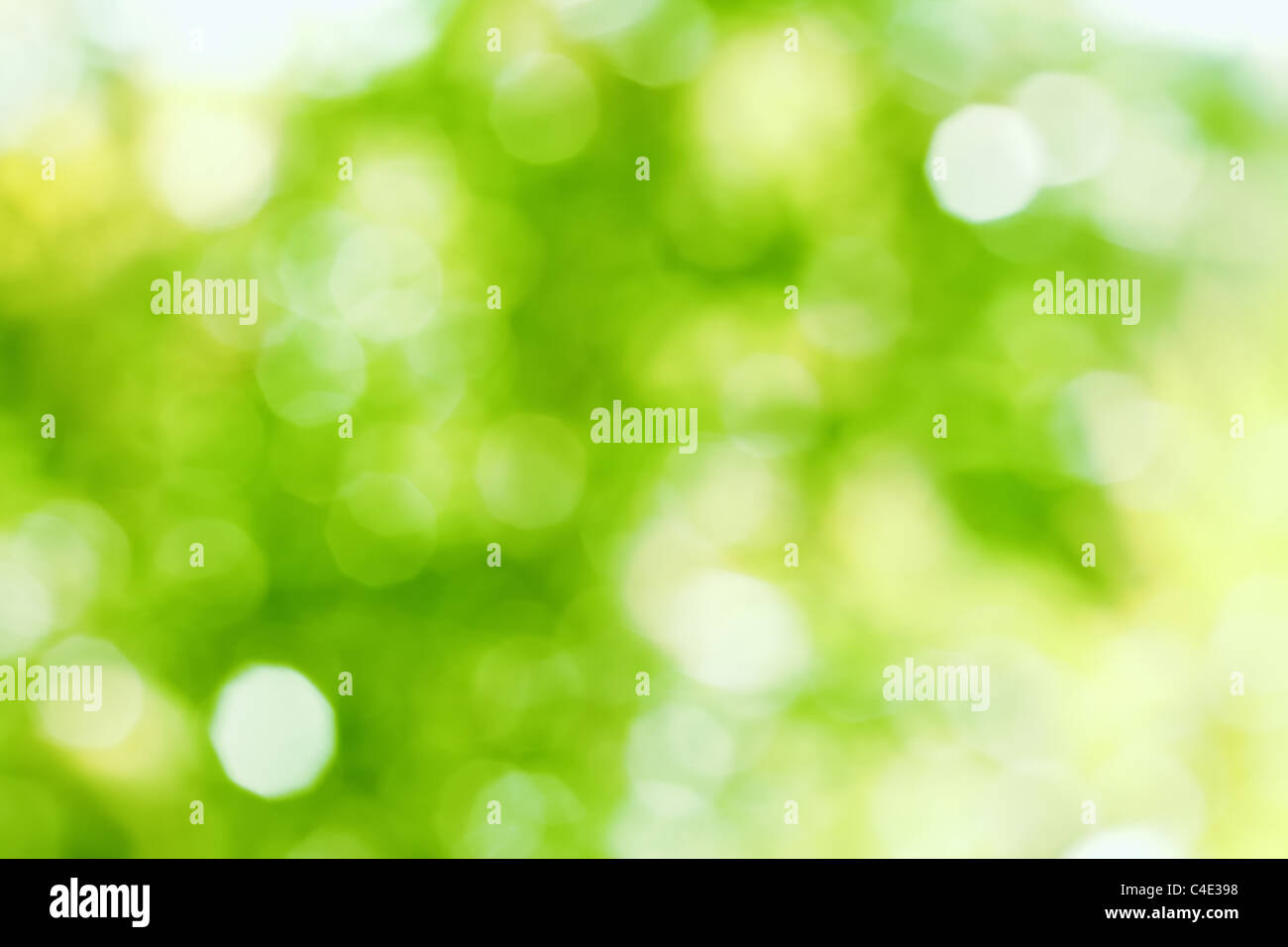 Green bokeh abstract light from nature. - Stock Image