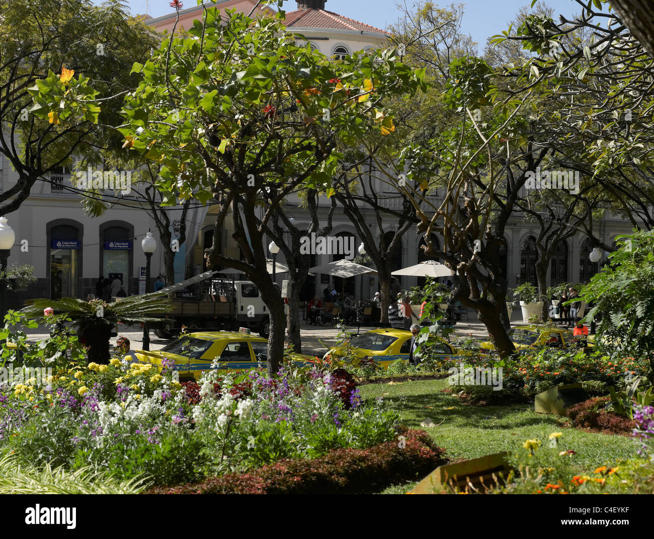 Good Jardim Municipal Gardens Funchal Madeira Portugal EU Europe   Stock Image