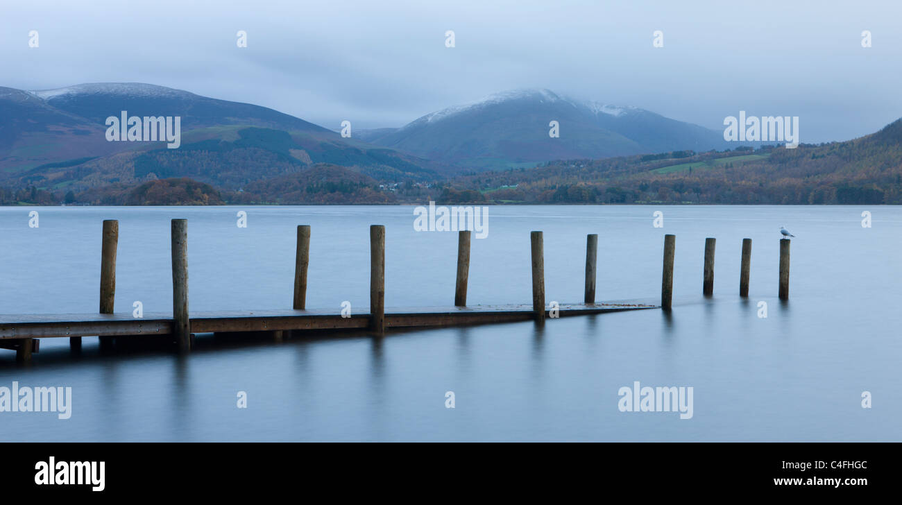 Partially submerged wooden jetty on Derwentwater with views to Keswick and Blencathra, Brandelhow Bay, Lake District - Stock Image
