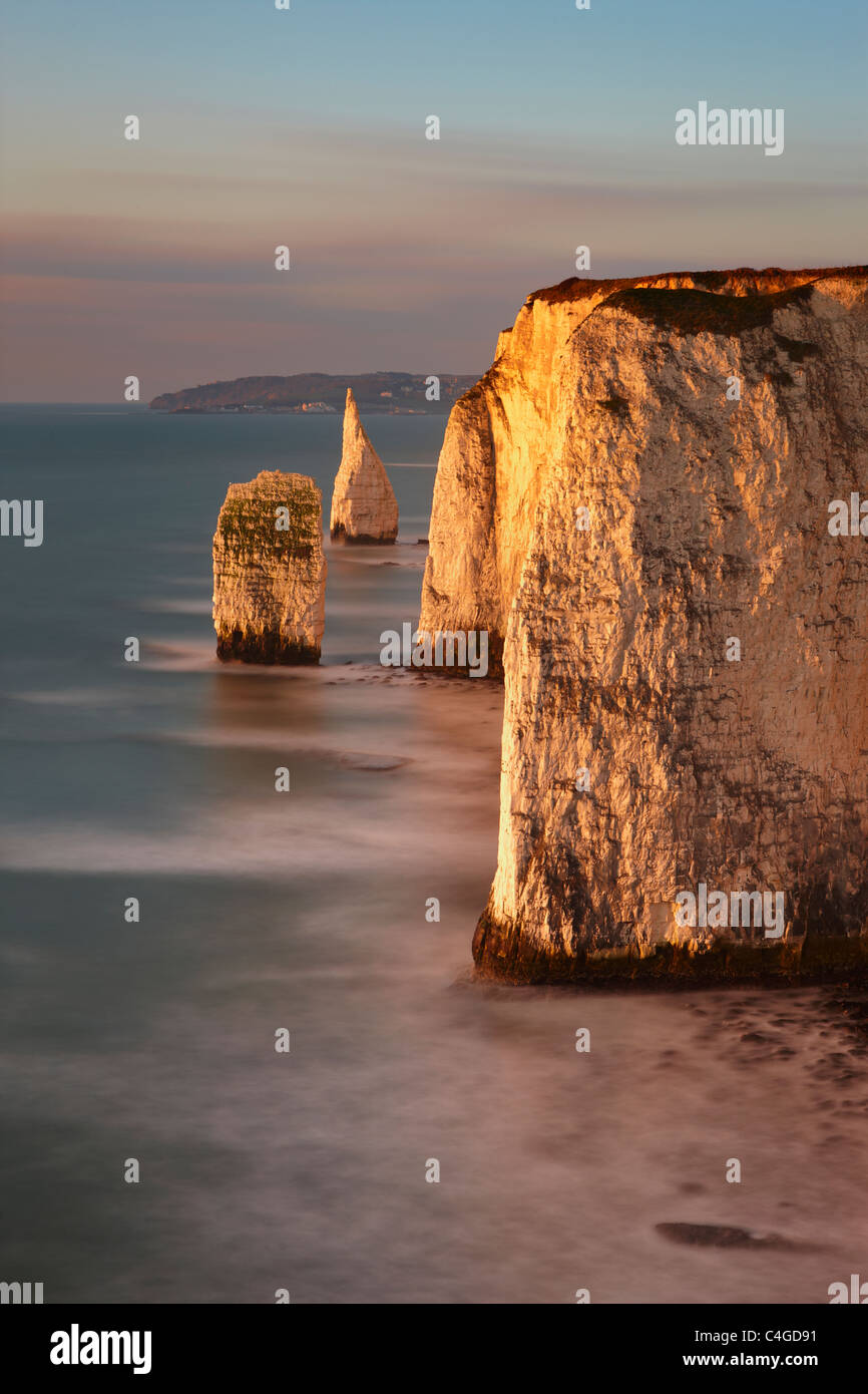 Old Harry Rocks, Handfast Point, Studland, Jurassic Coast, Dorset, England - Stock Image