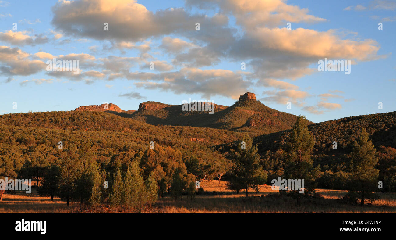 mt-kaputar-national-park-near-narrabri-western-nsw-australia-is-part-C4W19P.jpg