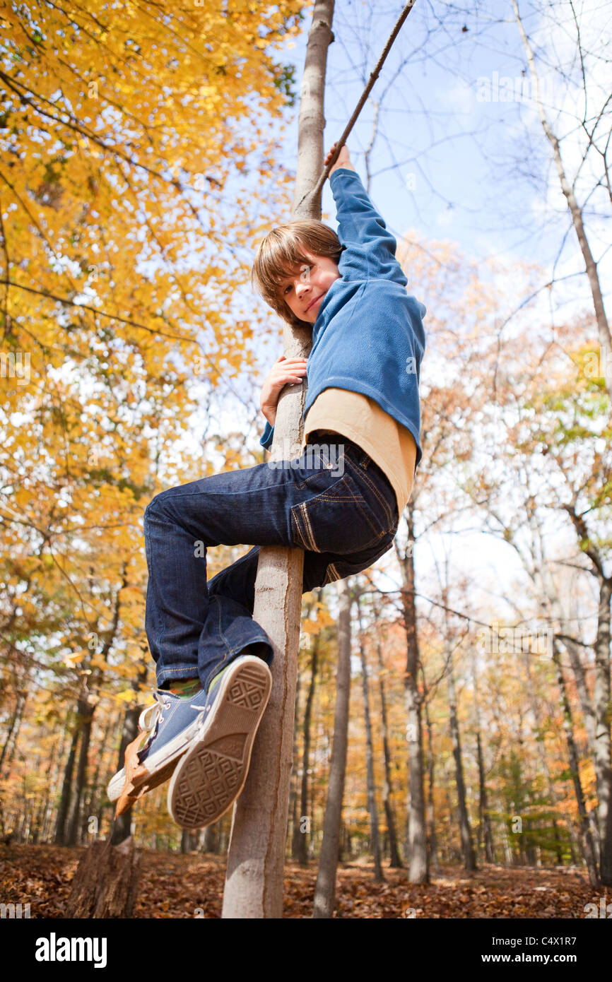 boy playing on tree - Stock Image