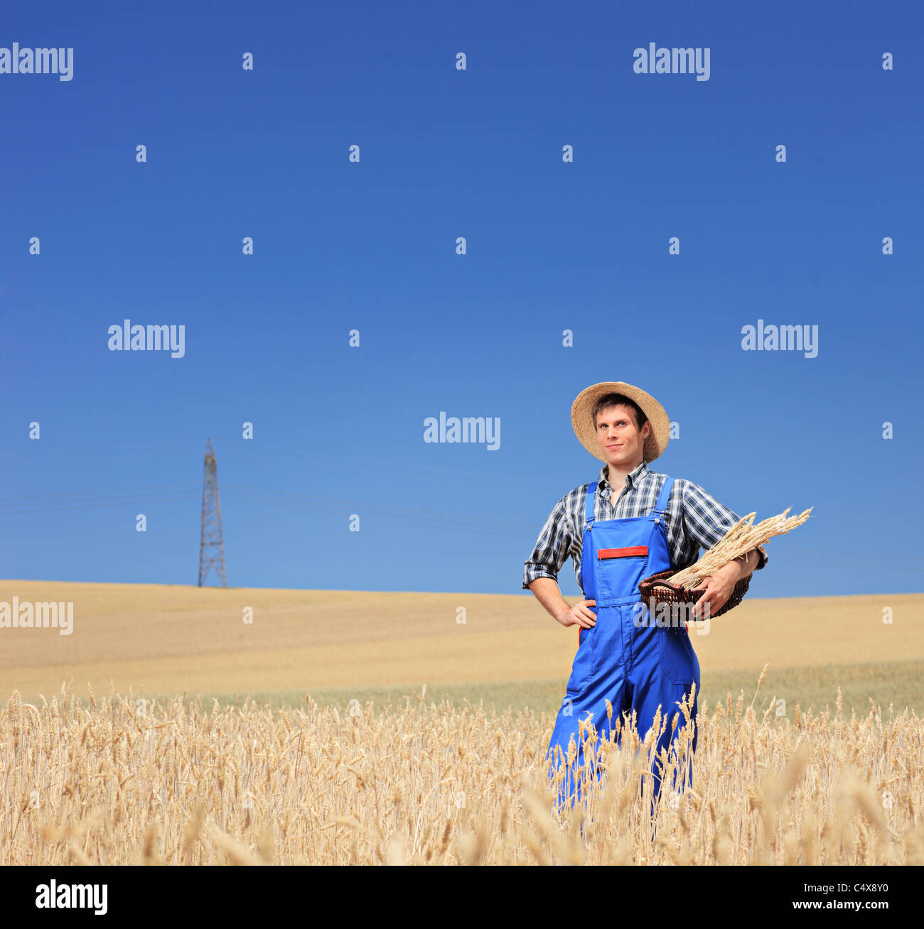 A young farmer with panama hat holding a basket in a field - Stock Image