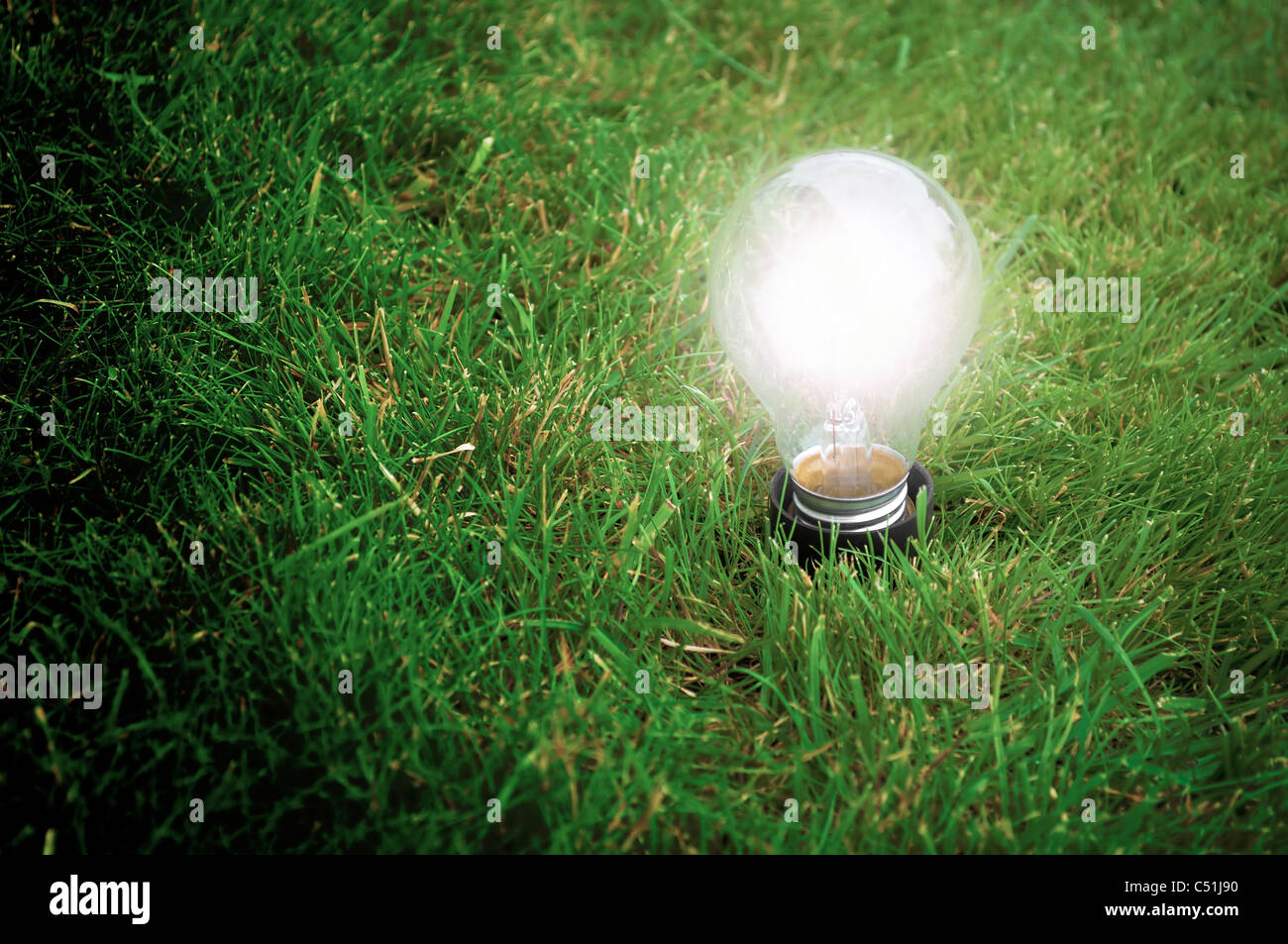 Alternative energy concept - Light bulb glowing in the grass at night - Stock Image