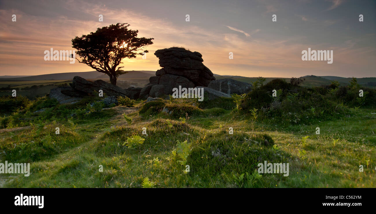 Sunset at Saddle Tor, South Dartmoor National Park, Devon, England UK - Stock Image