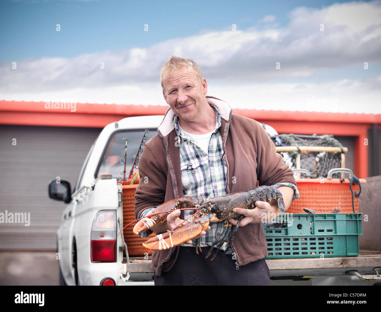 Fisherman holding lobster by truck - Stock Image