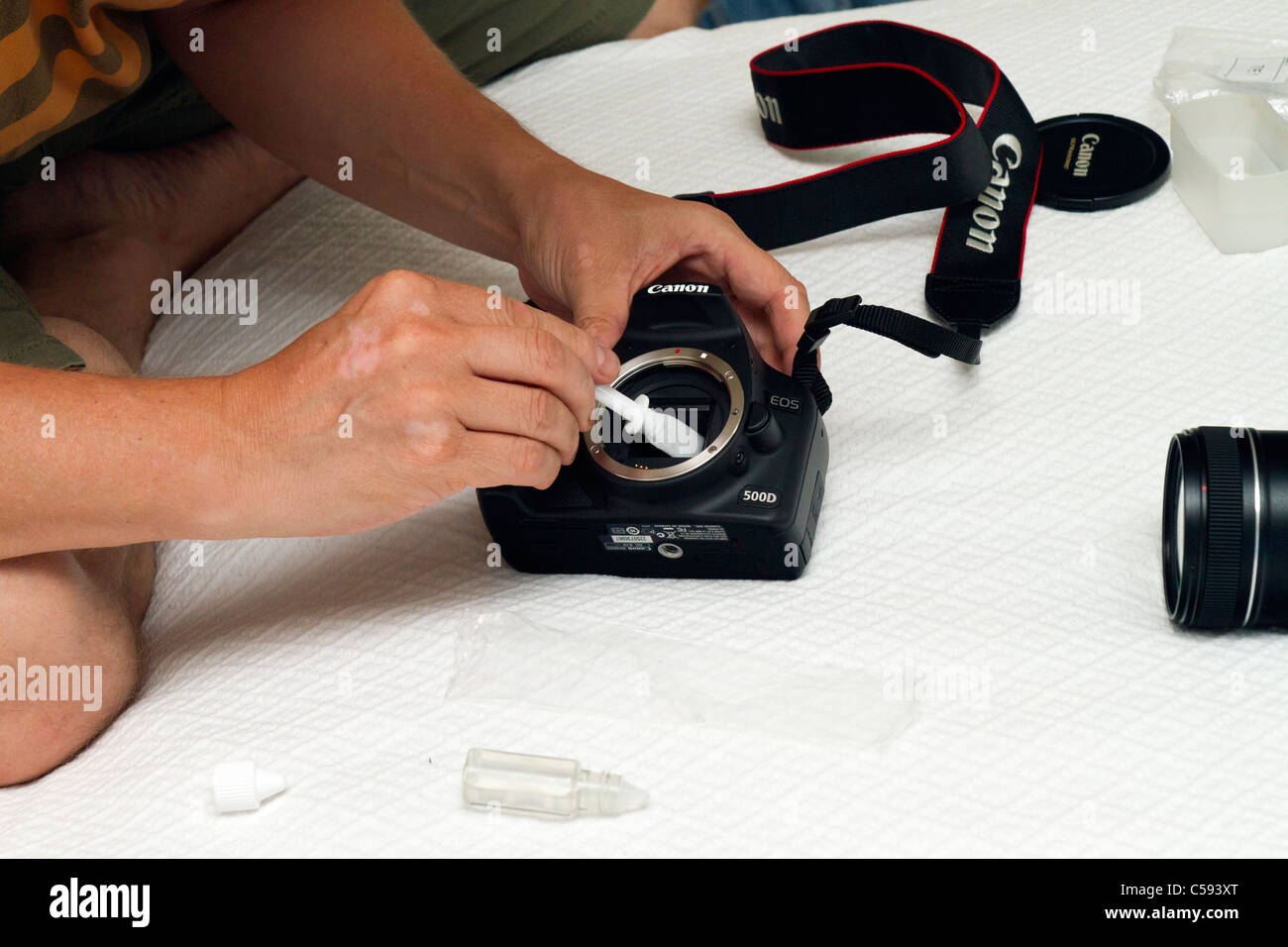 Cleaning the sensor of a Canon DSLR camera. - Stock Image