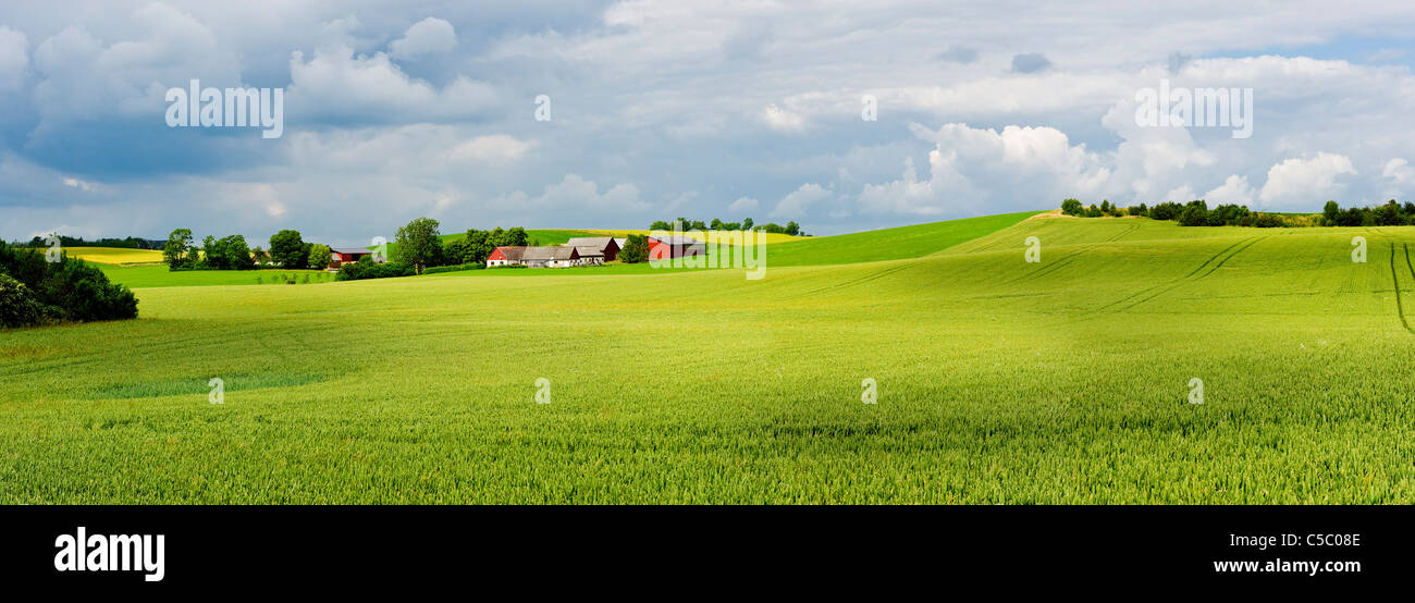 Panoramic shot of peaceful cropland with cloudy sky in the background at Scania, Sweden - Stock Image