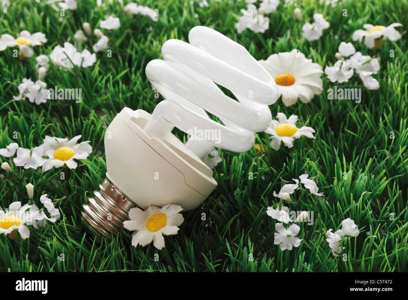 Energy saving lightbulb on synthetic turf, close-up - Stock Image