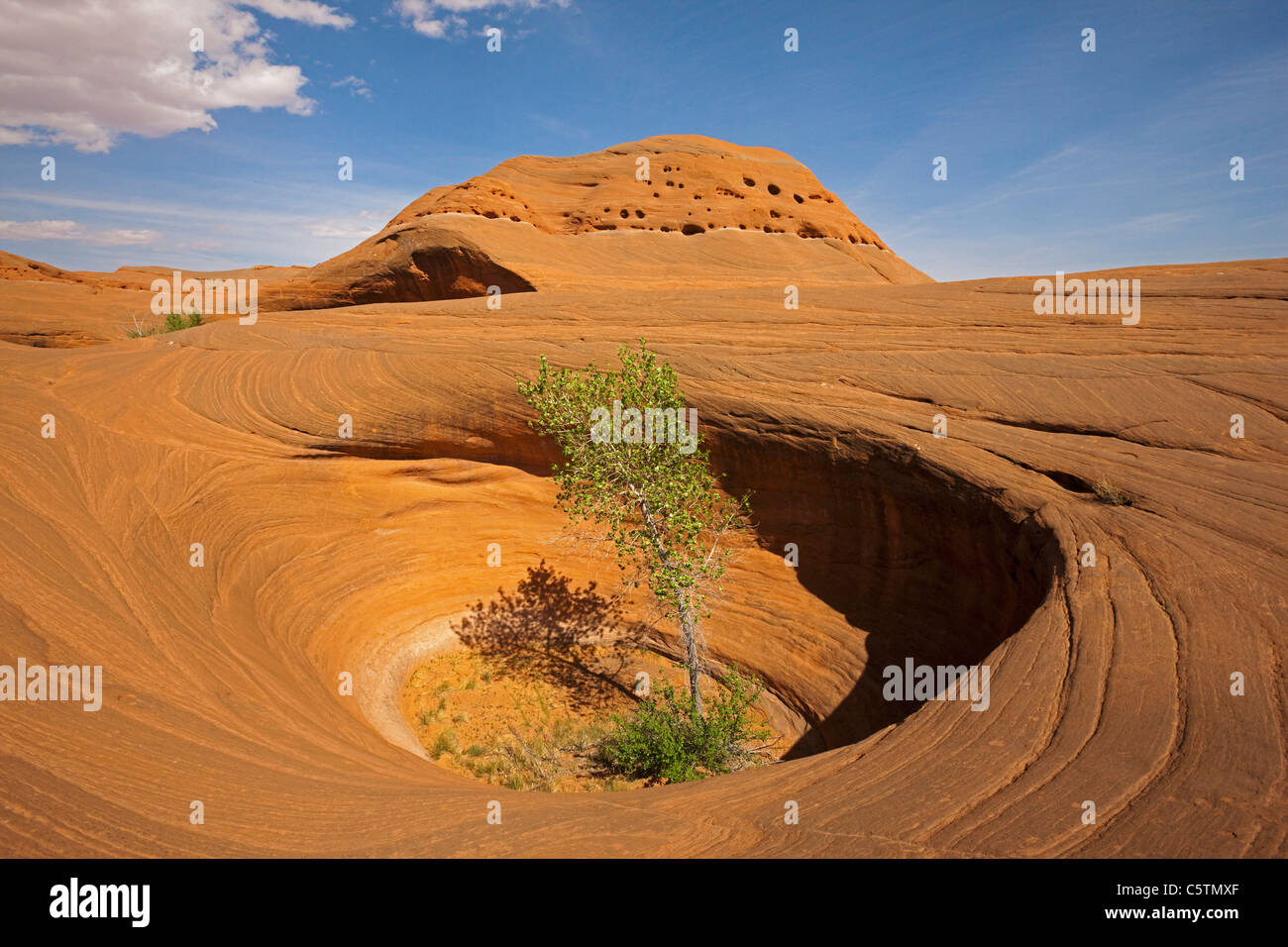 USA, Utah, Grand Staircase Escalante National Monument, Dance Hall Rock, Rocky landscape - Stock Image