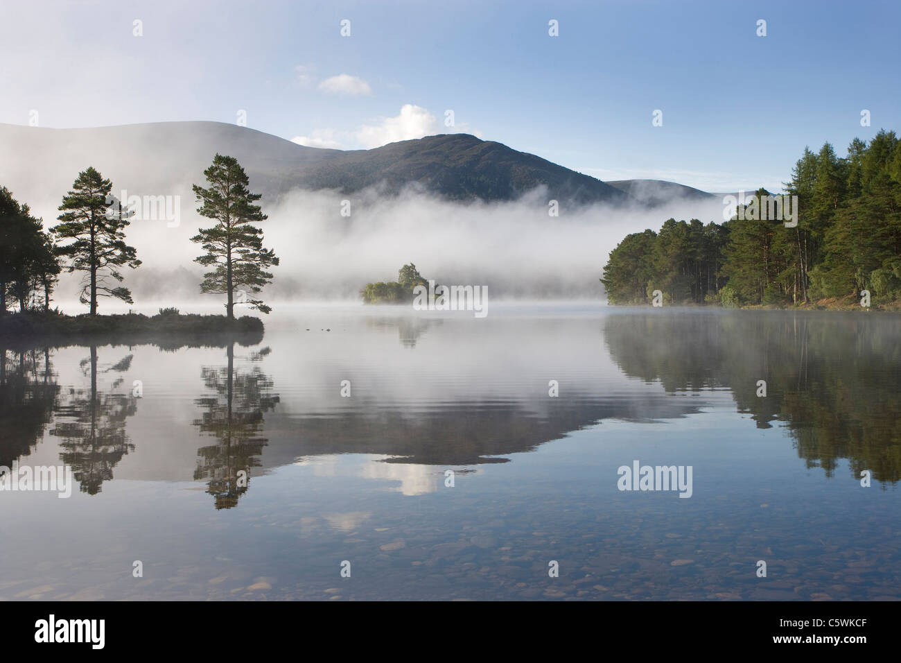 Morning at Loch an Eilien, Rothiemurchus Forest, Cairngorms National Park, Scotland, Great Britain. Stock Photo