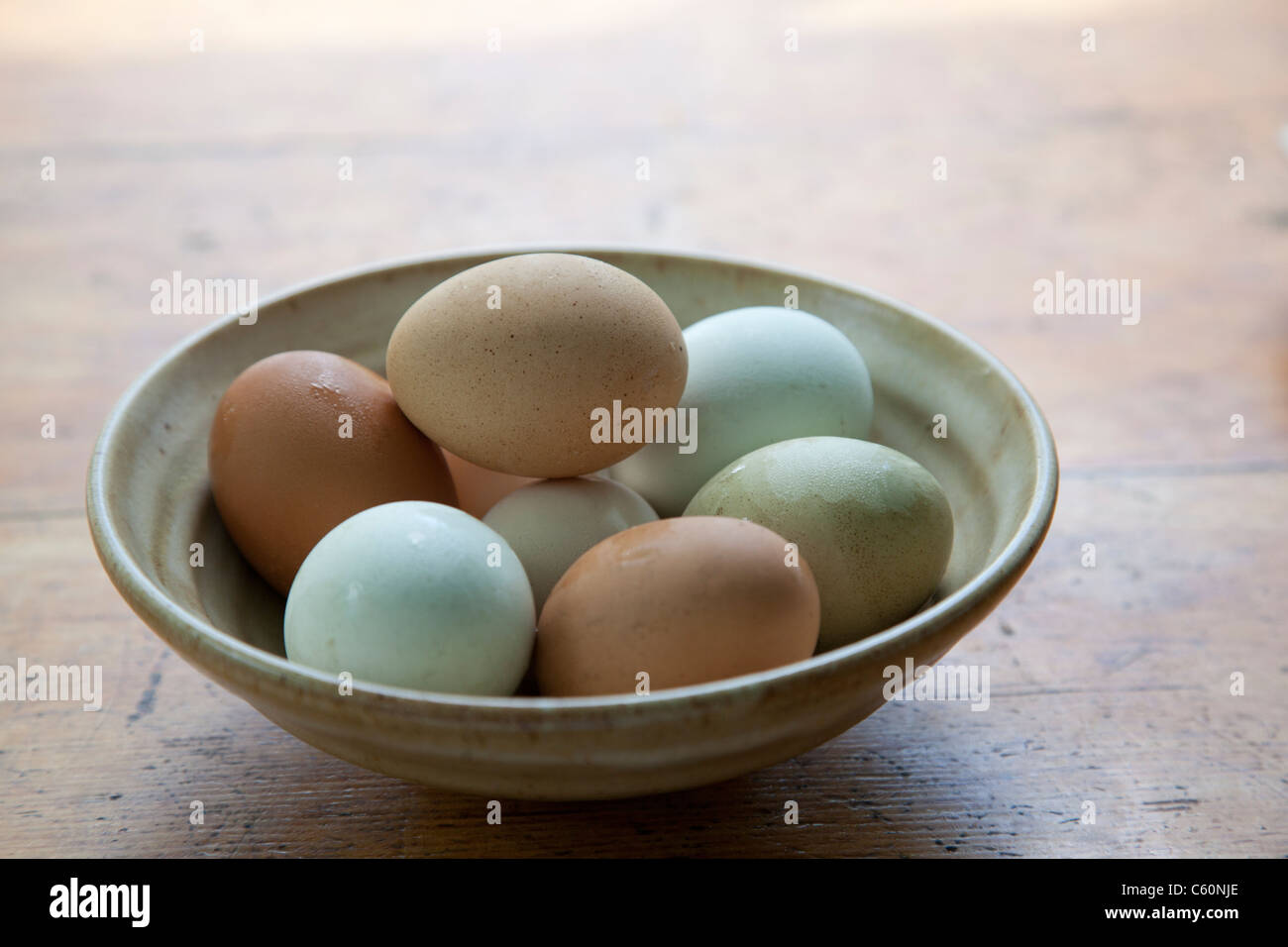 variety of different colored farm fresh eggs in a bowl - Stock Image