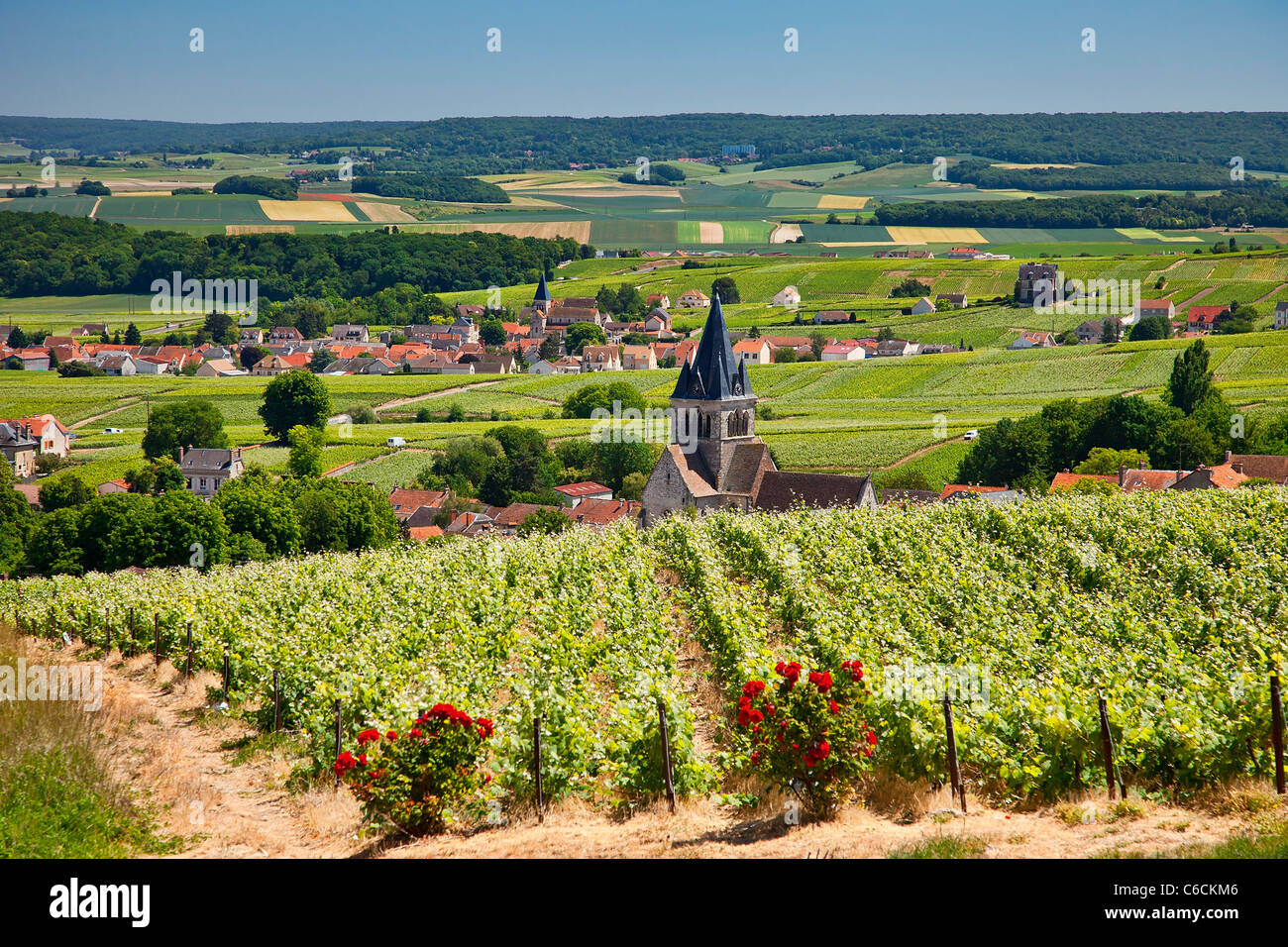France, Marne, Villedomange, a village close to Reims associated with Champagne wine - Stock Image