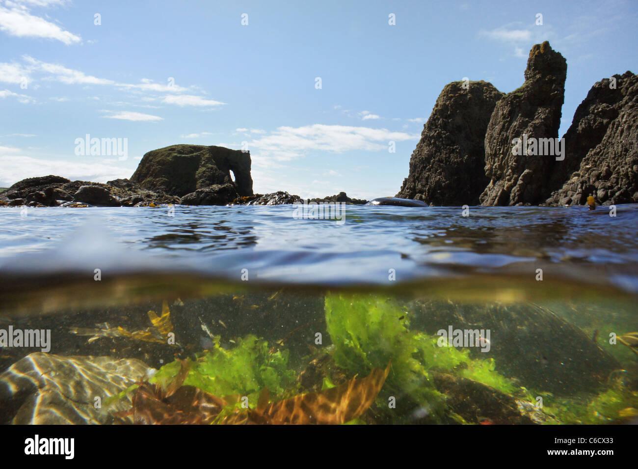Elephant Rock, Ballintoy,  Co Antrim in Northern Ireland. - Stock Image