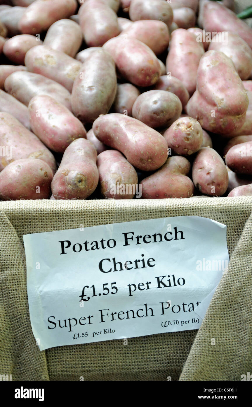 Potato French Cherie for sale at a Farmers Market - Stock Image