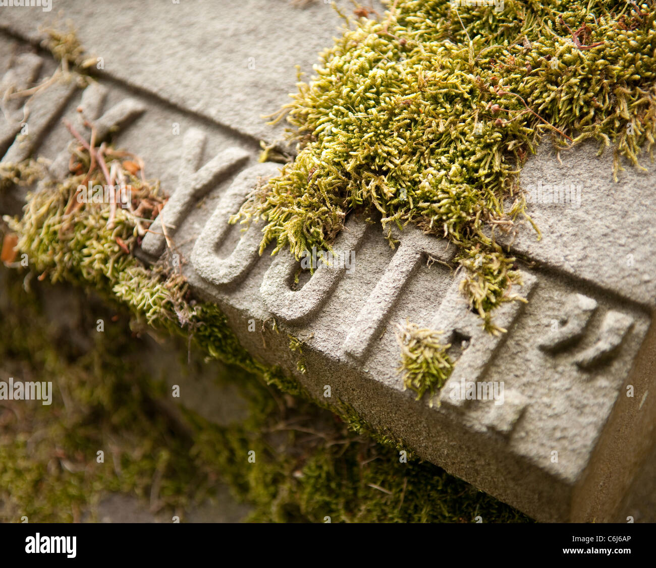 Gravestone featuring the word 'Youth: covered in moss - Stock Image
