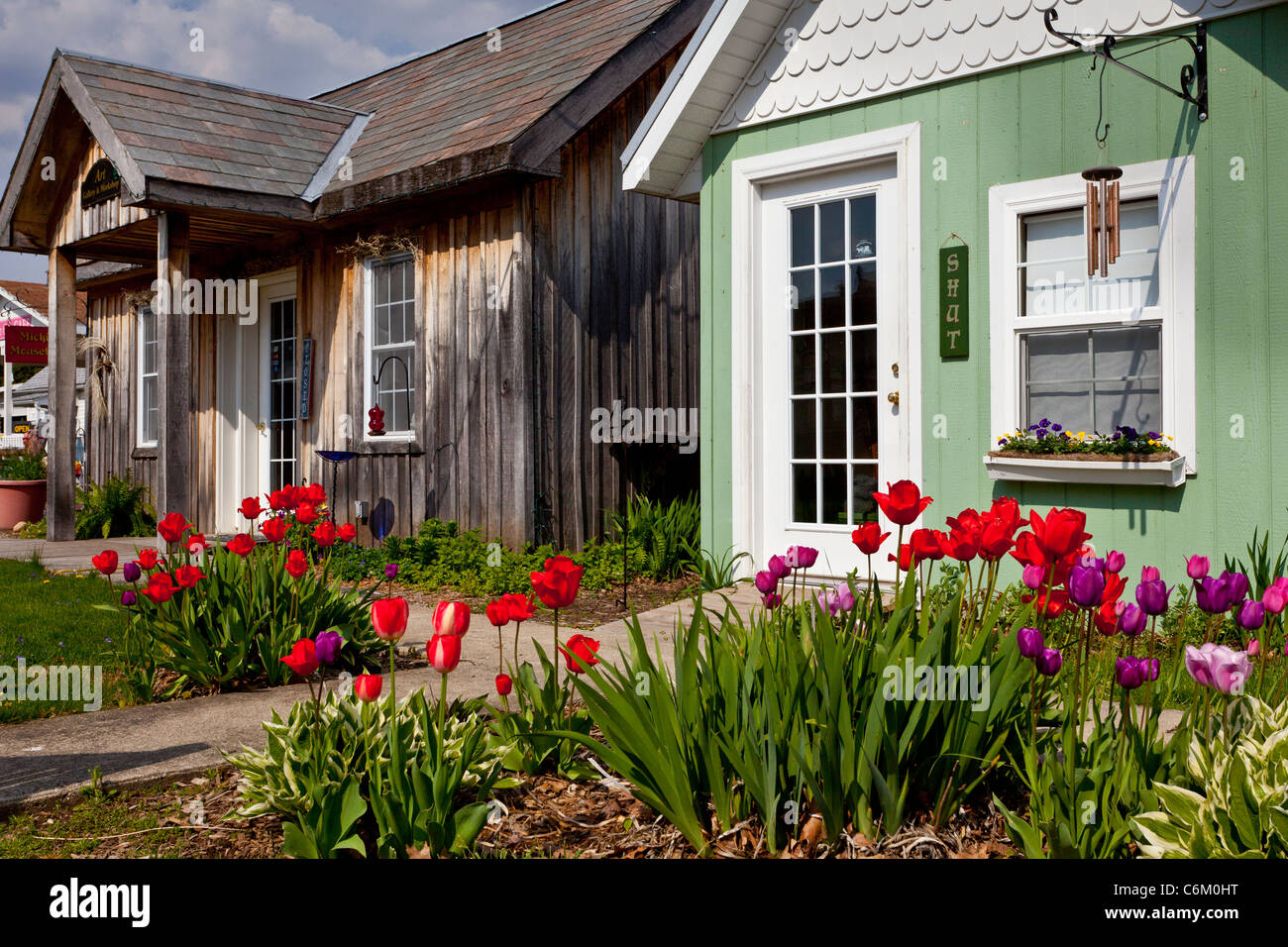Small cottages with tulip garden display in Shipshewana, Indiana, USA. - Stock Image