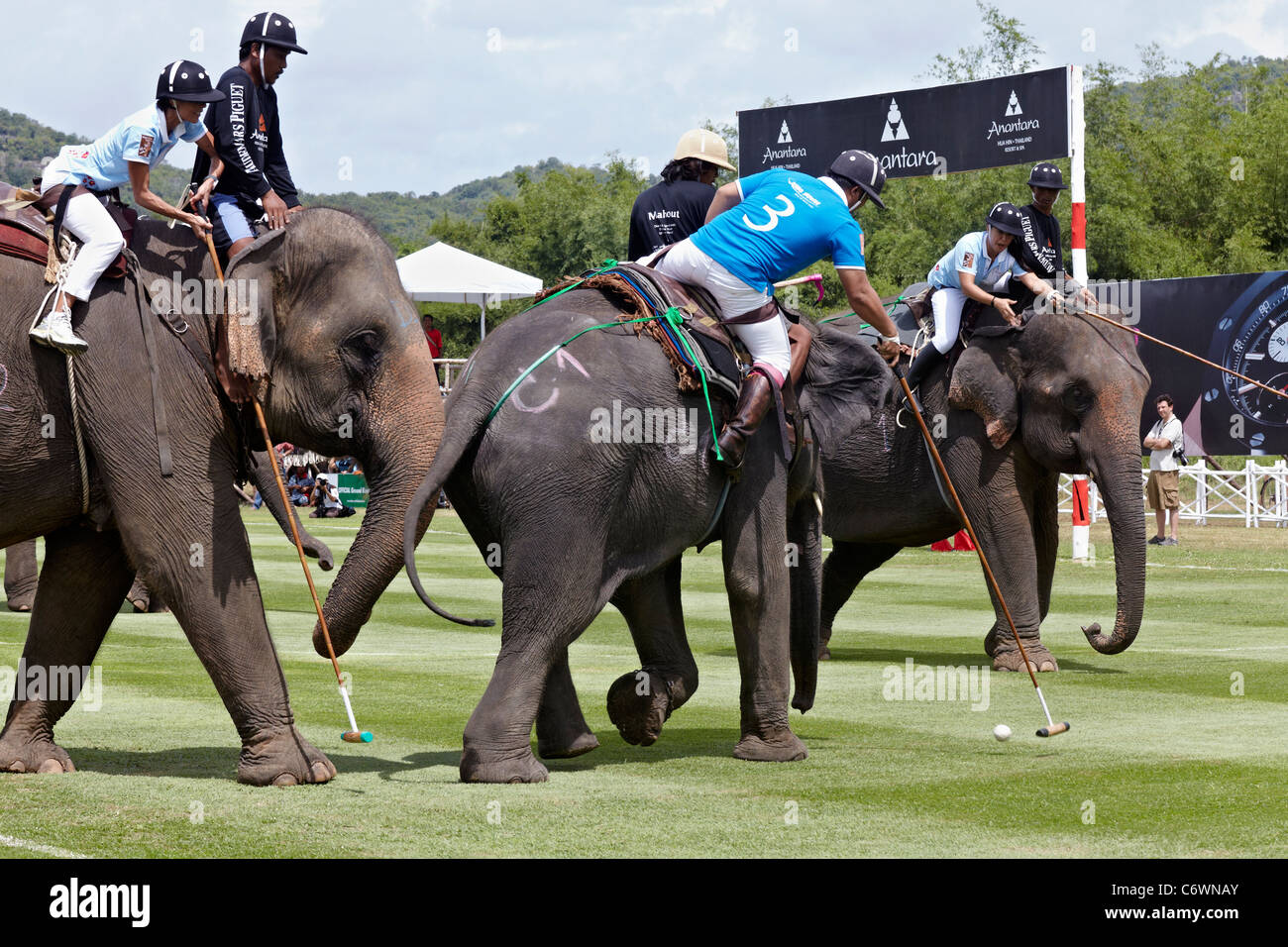 elephant-polo-match-action-2011-kings-cu