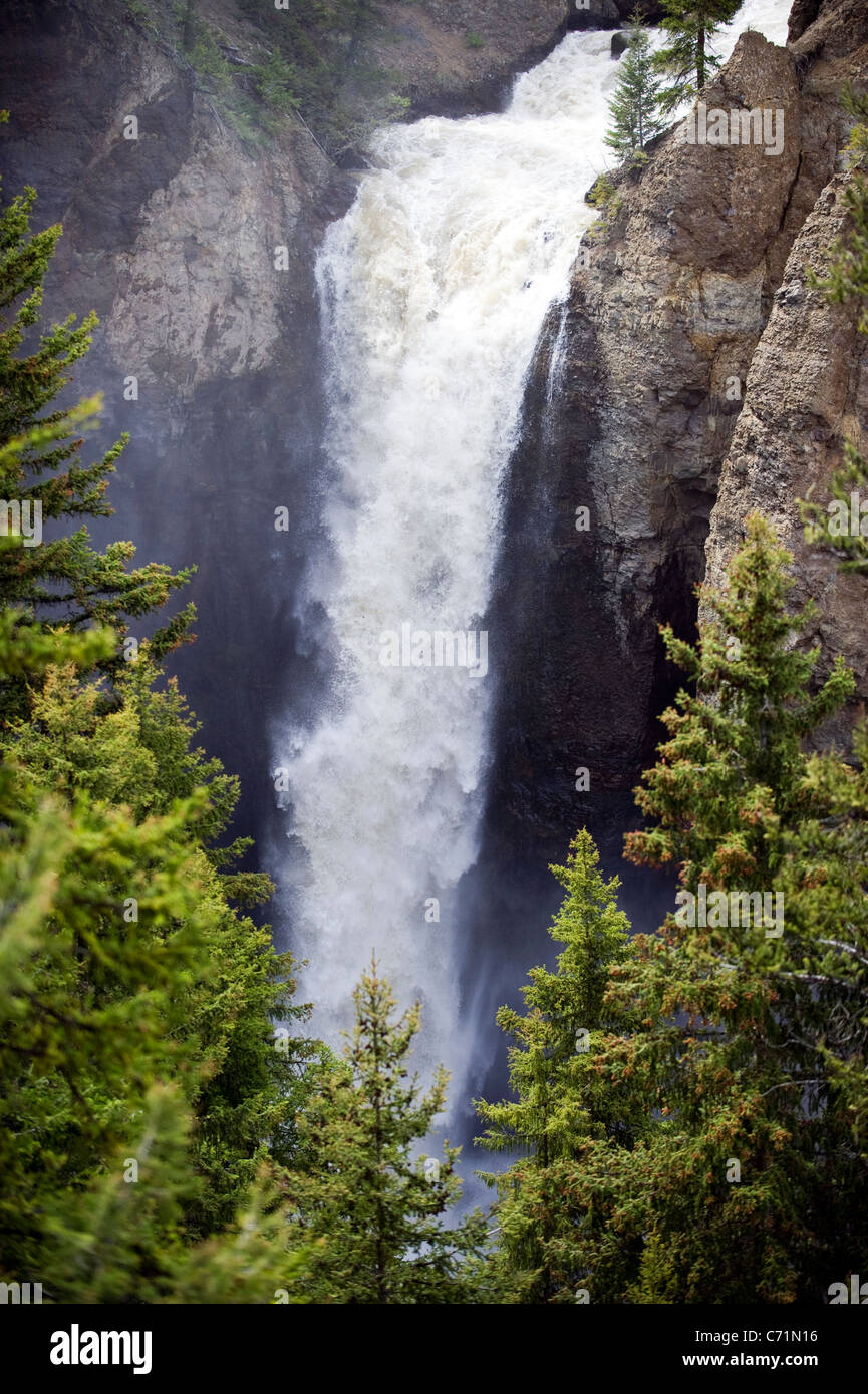 Tower Fall at peak flow in Yellowstone National Park, Wyoming. - Stock Image