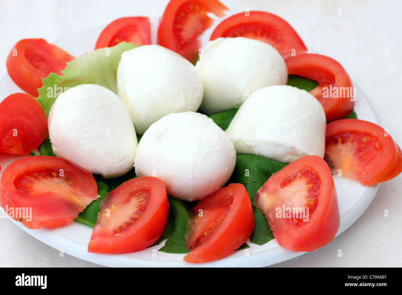Tomato and buffalo mozzarella salad - Stock Image