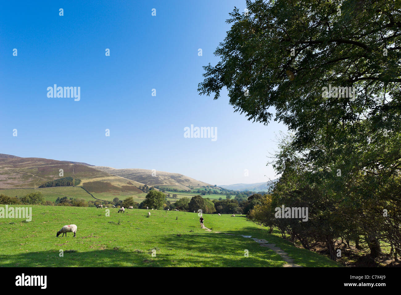 Runner on The Pennine Way near its start in Edale looking towards the village, Peak District National Park, Derbyshire, - Stock Image