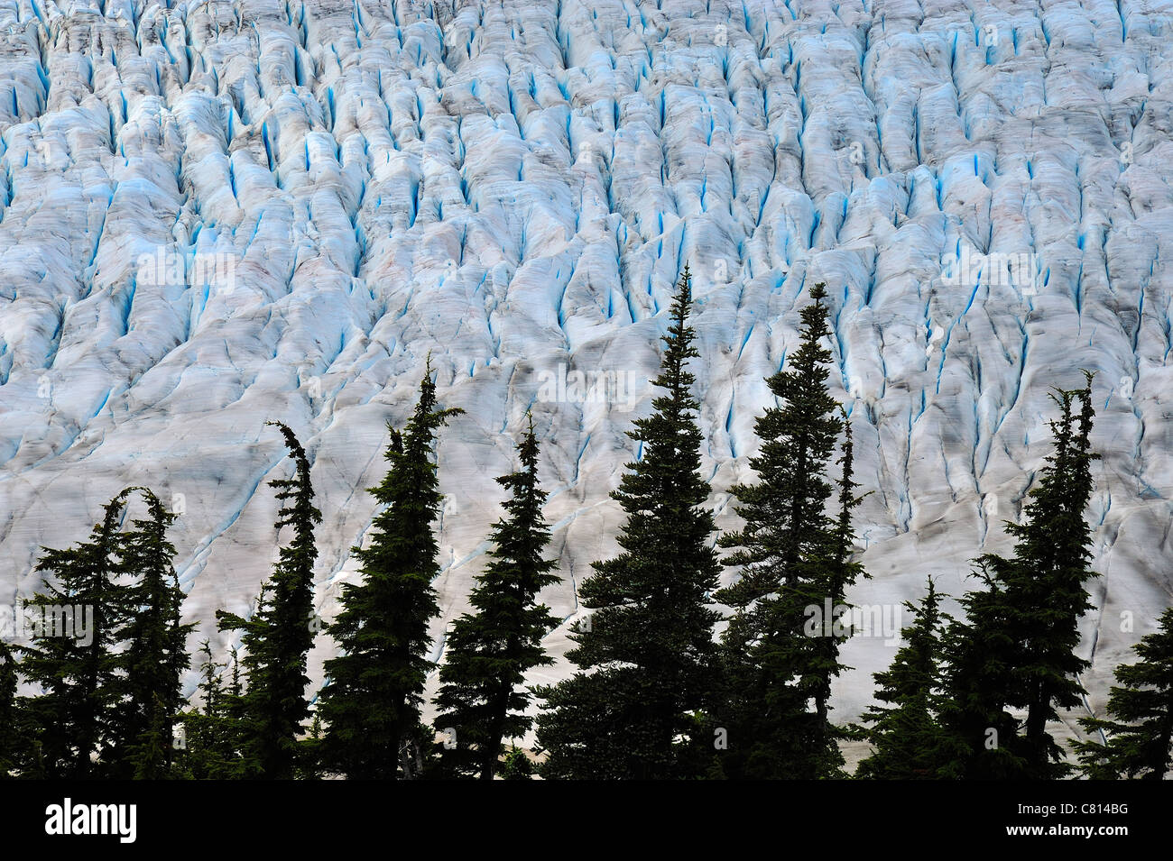 A close up image of the blue ice of the Salmon Glacier near Stewart British Columbia Canada - Stock Image