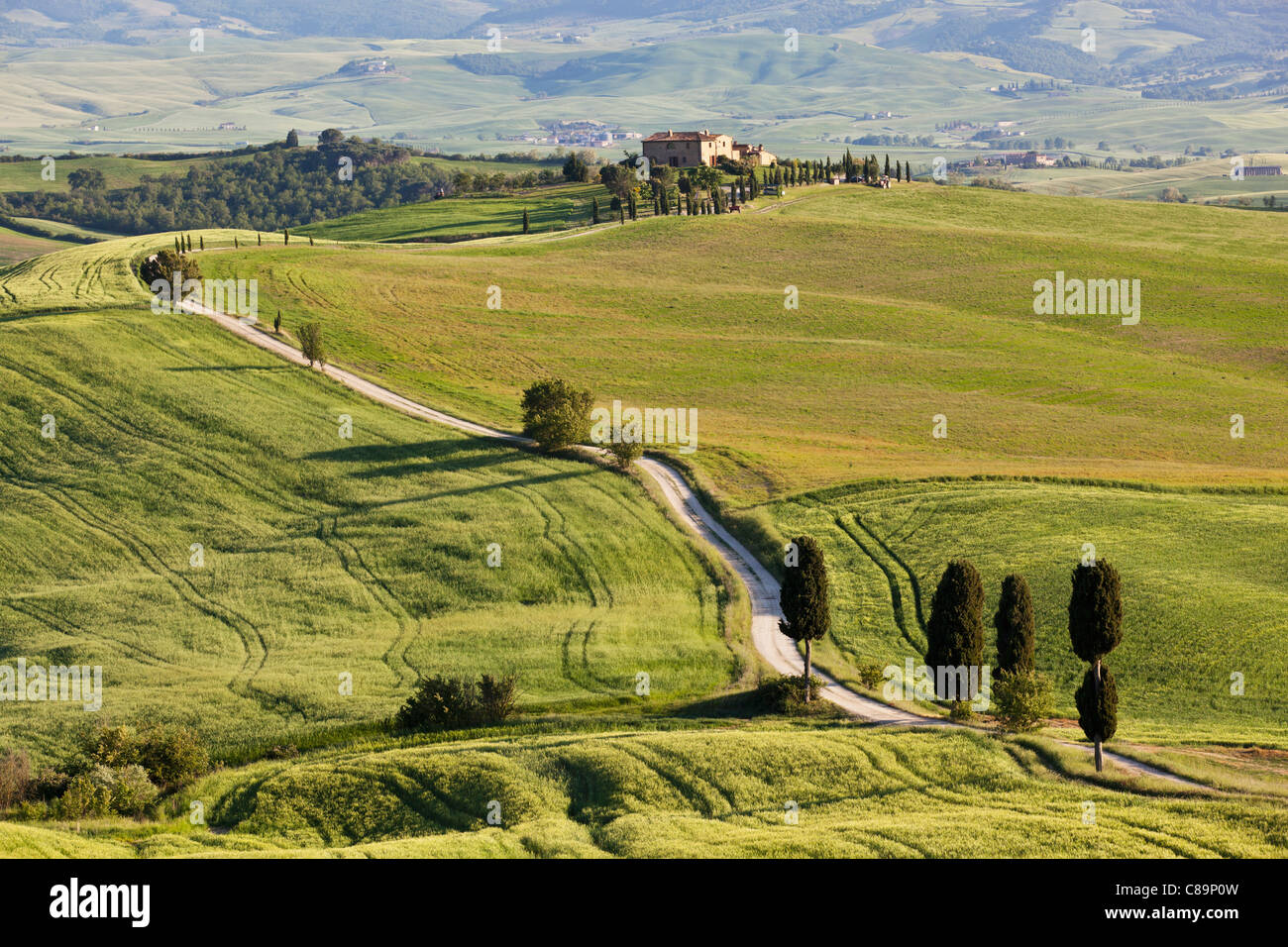Italy, Tuscany, Val d'Orcia, View of hilly landscape and farm with cypress trees - Stock Image