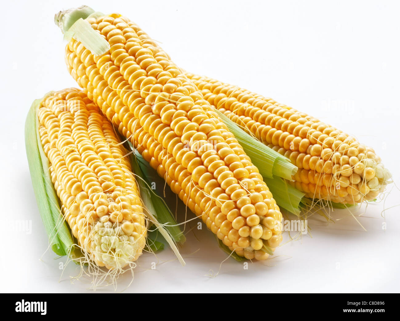 Corn on a white background - Stock Image