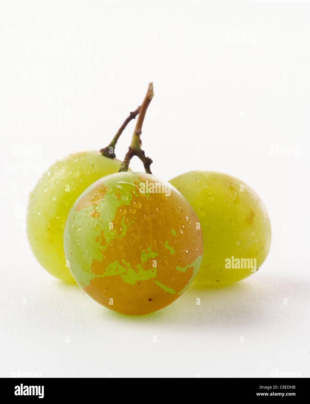 European continent drawn on a white grape - Stock Image