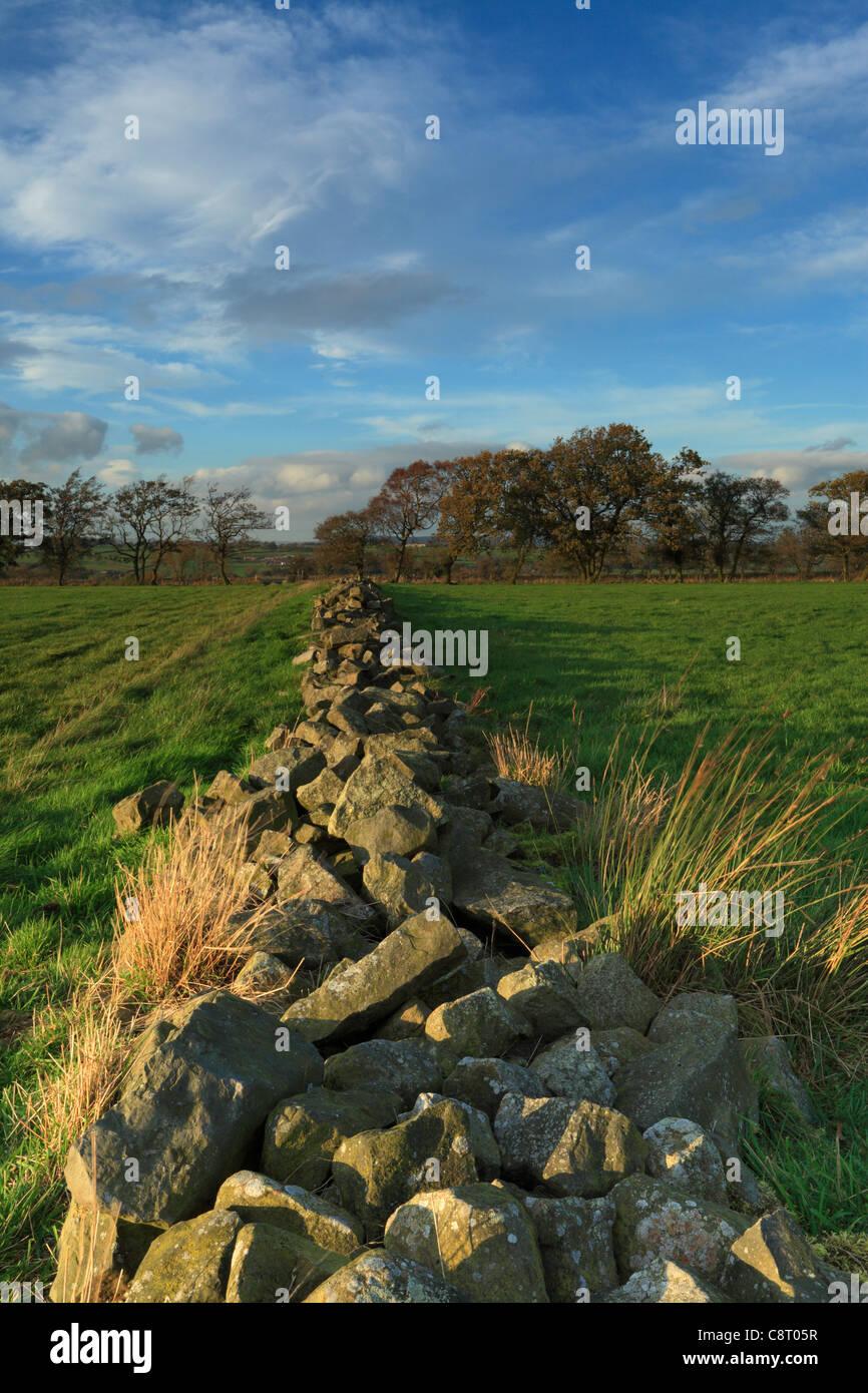 A dilapidated stone wall running along Knabs Ridge near Harrogate in Yorkshire - Stock Image