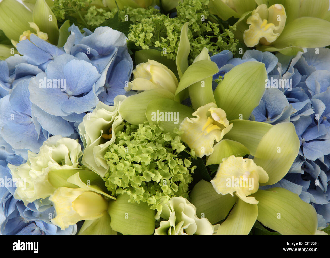 A close-up of a colorful bouquet of flowers. A blue hydrangea, small ...