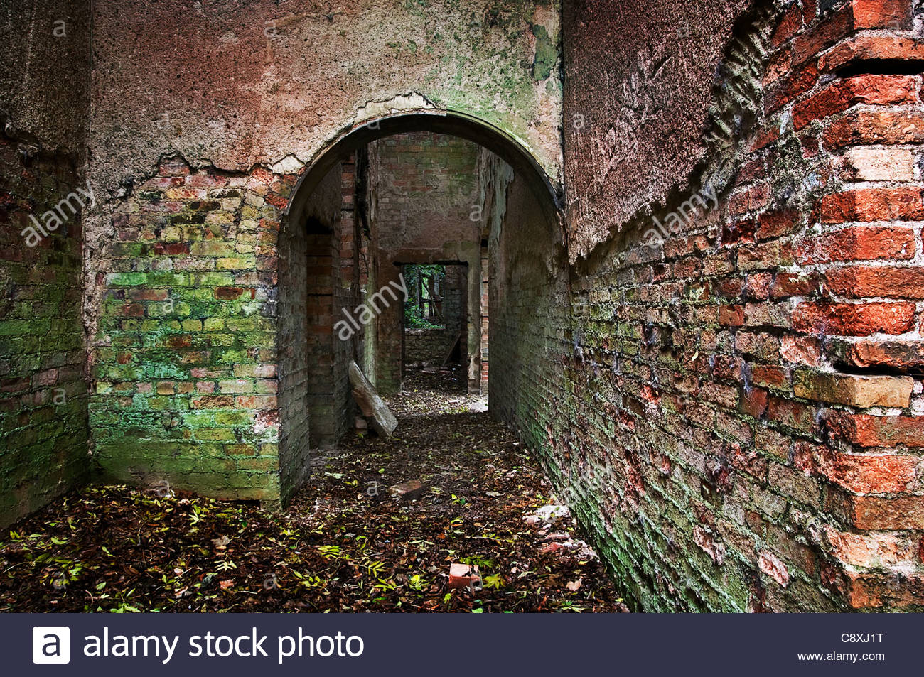 Derelict brick ruin - Stock Image