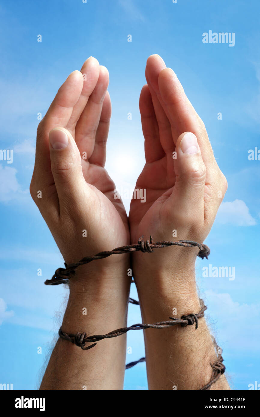 Hands tied with barbed wire - Stock Image