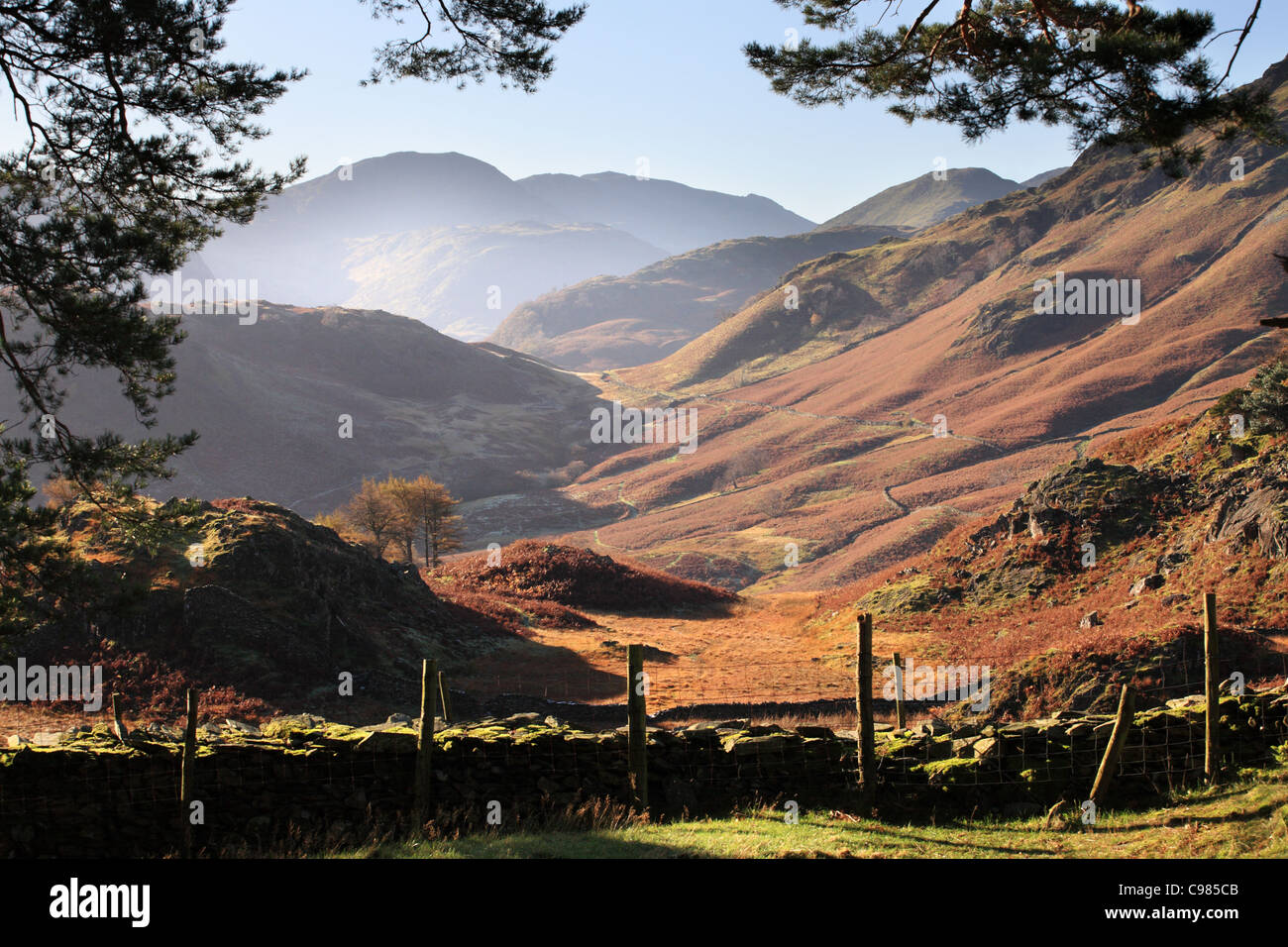 borrowdale-from-castle-crag-in-autumn-en