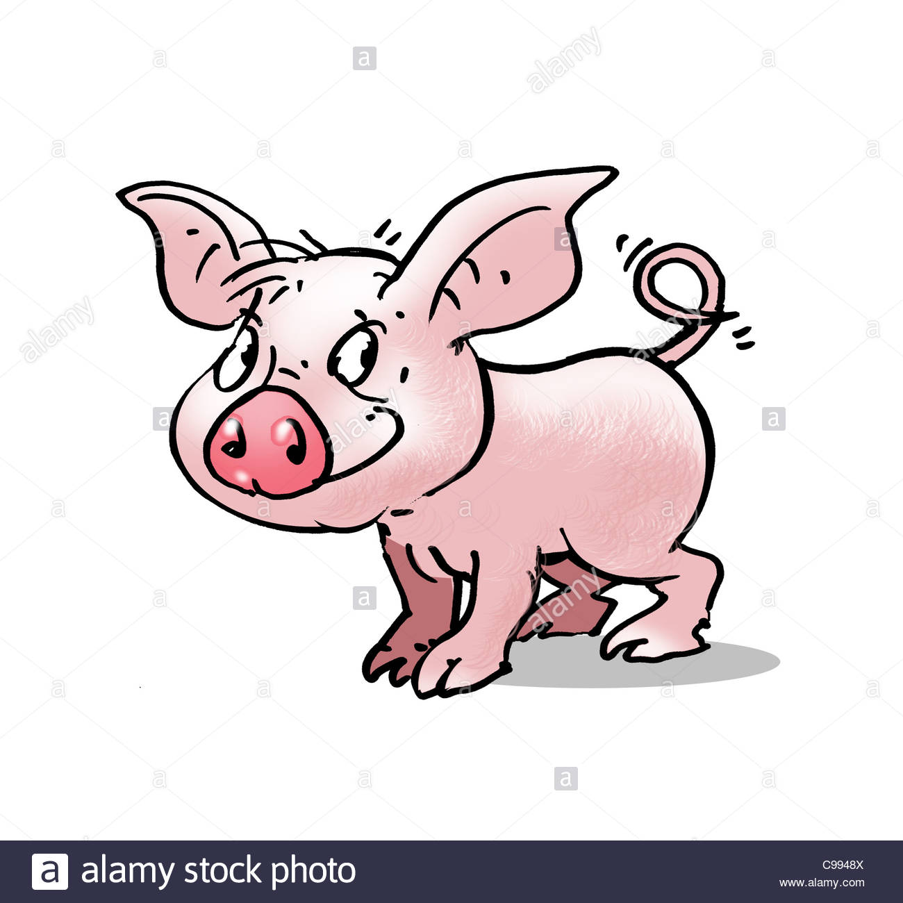 piglet sympathy figure curly tail optional deceitful Character development - Stock Image